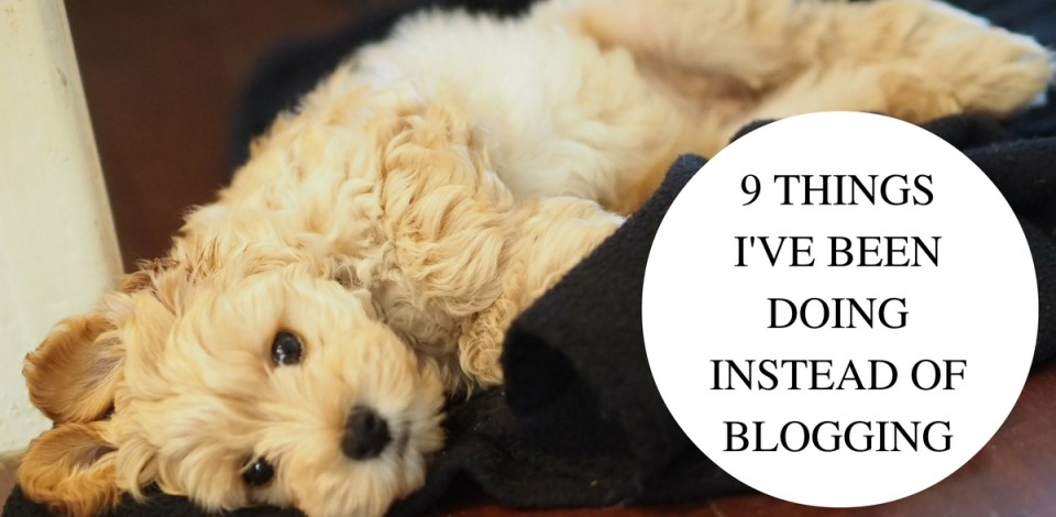 9-things-ive-been-doing-instead-of-blogging